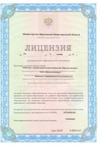 Лицензия_на_образовательную_деятельность (1)