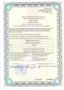 Приложение к лицензии новое